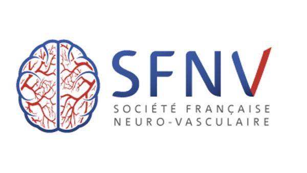 logo SFNV