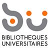 Roksprocket Logo BU